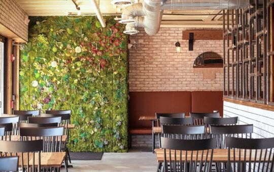 Bar Chido modernizes Mexican street food for Downers Grove