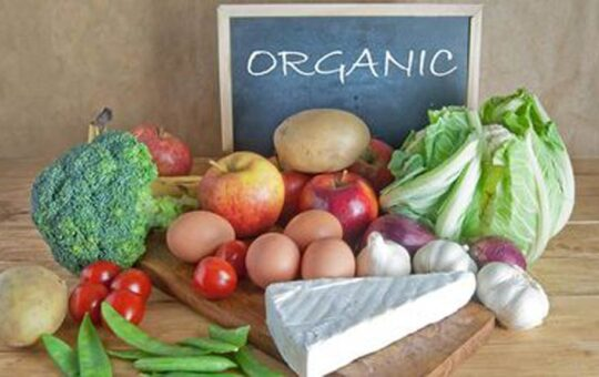 Organic food exports up 39% in FY21