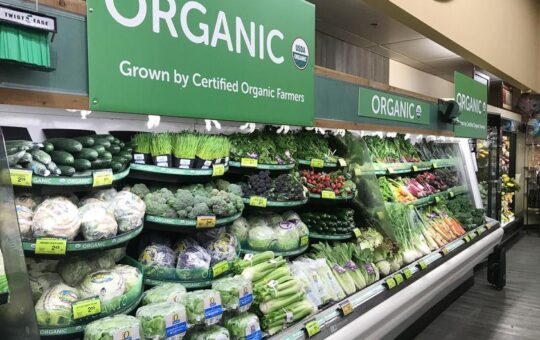 Pandemic ignites record sales of organic products   Organic