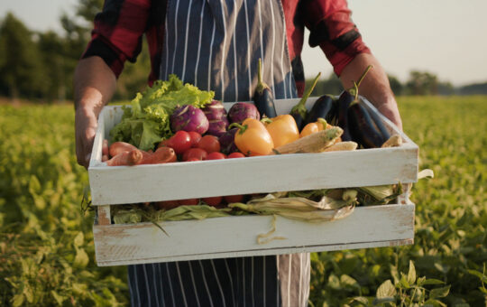What Is Organic Food? And Is It Worth The Price?