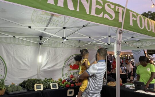Spurred By Organic Food Providers, Southeast Queens Grows A Night Market