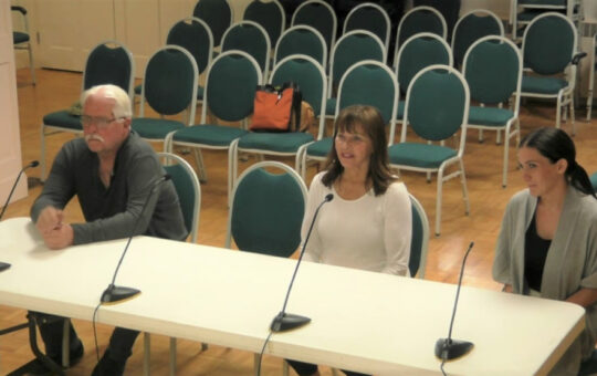 Planning Board Vice Chair questions 'Street Food' proposal