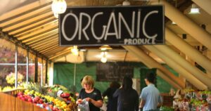 Organic food: 8 myths that should die on the vine