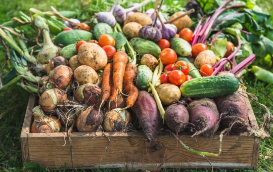 Surprising Effects of Eating Organic Produce, Says Science