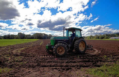 Valley News - Tough times for NH's organic farmers